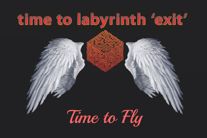 time-to-fly-